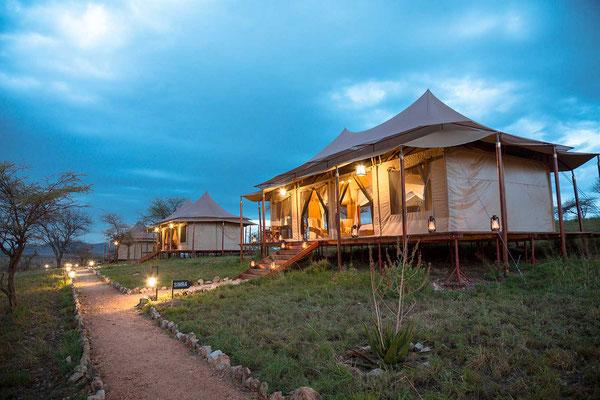 Matawi Serengeti Camp