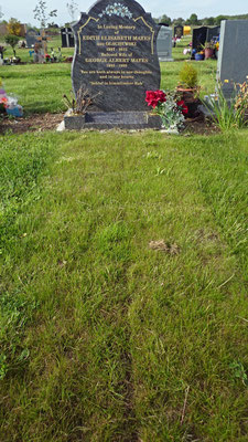 Before photo of grave site