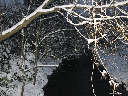 Winter - Ahe im Winter