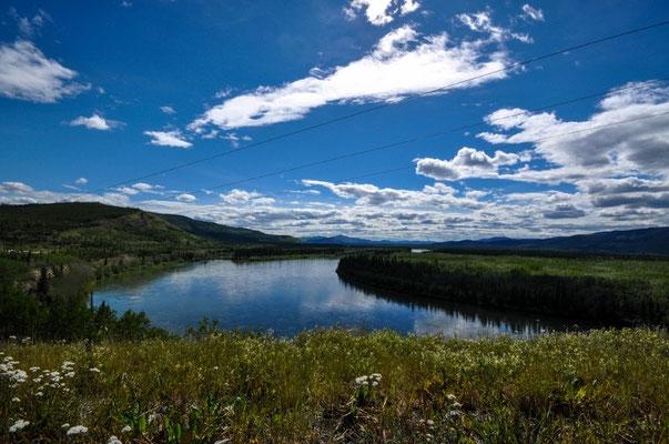 Fahrt entlang des Yukon Rivers