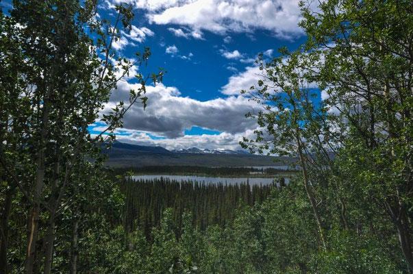 Schöne Aussicht auf dem Alaska Highway