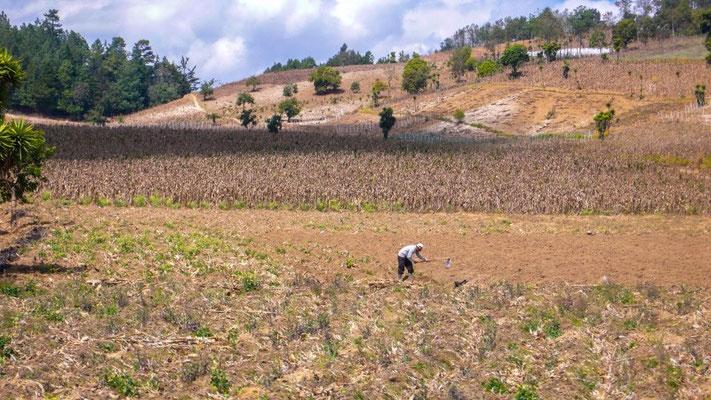 Kein einfaches Leben führen die Einheimischen in diesen Dörfern