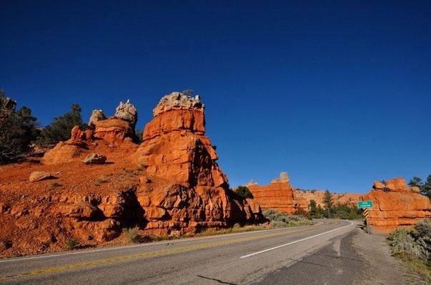 Fahrt durch den Red Canyon