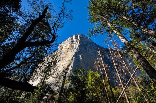 Der riesige El Capitan