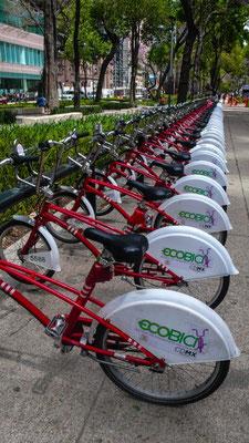 Wer den Mut hat in dieser riesigen Stadt Fahrrad zu fahren, kann sich eines mieten!
