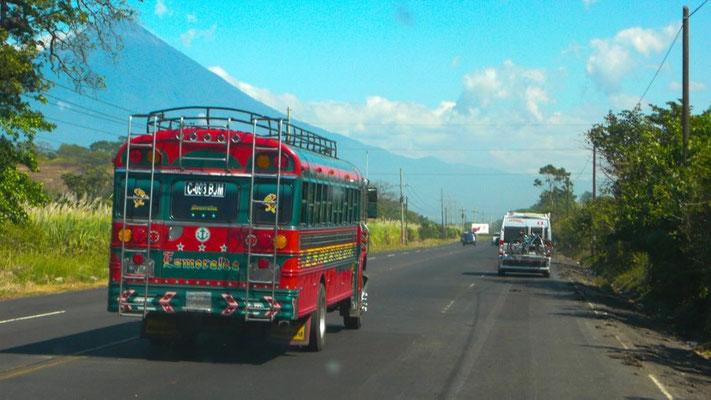 Wir sehen haufenweise schöne, farbige Busse