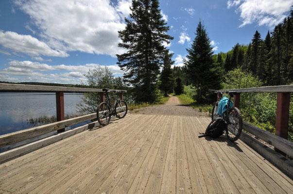 Biketrail im Algonquin Provincial Park