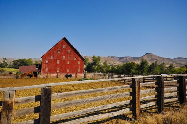 Tschüss Oregon, es war herrlich hier!