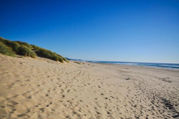 Nehalam Beach
