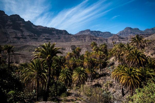 In den Bergen von Gran Canaria