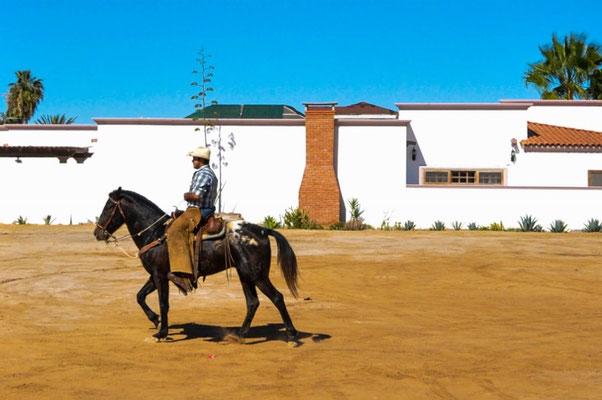 Mexikanischer Cowboy