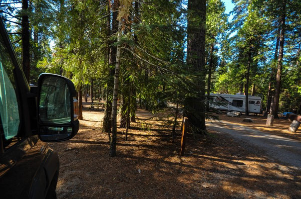 Hodgdon Meadow Campground, Yosemite Nationalpark