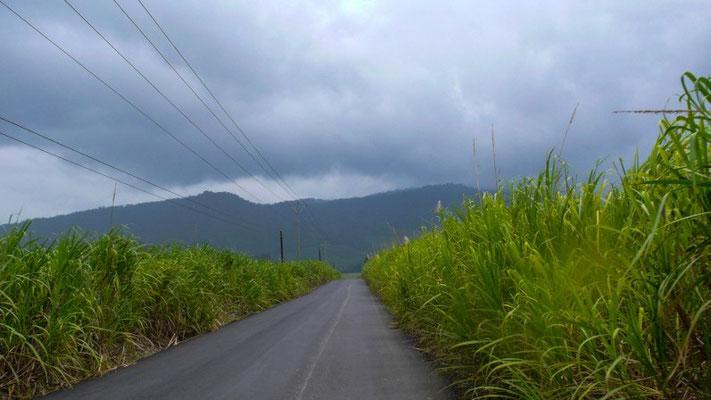 Unterwegs an die Karibikküste