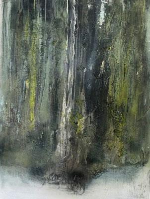 Rainforest II - 60 x 80 cm x 4 cm - 2015