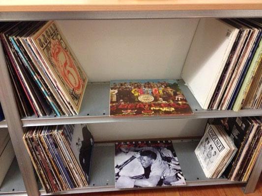 Schallplattenregal, Regal aus Stahl für Platten Schallplatten, Regalfächer über-oder nebenander anbauen möglich je nach Anzahl der LPs. Regalmaße einfach anfragen!