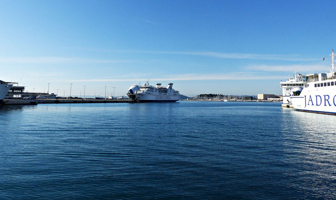 Der Hafen in Split