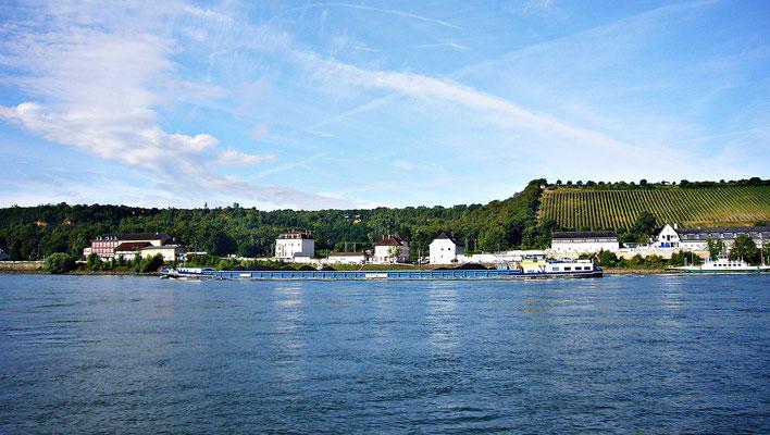 Beim schönen Rhein