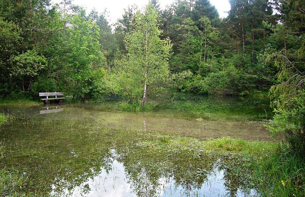 Hochwasser im Biotop
