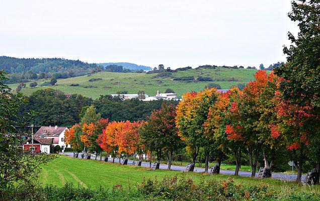Herbst im Sumova