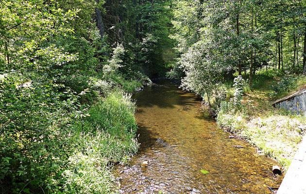 Natur in Böhmen