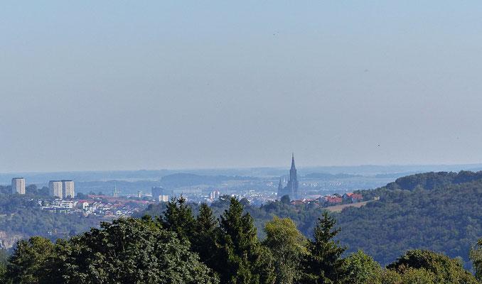 Blick zum Ulmer Münster