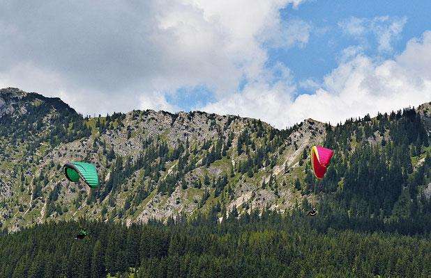 Gleitschirmflieger in Tirol