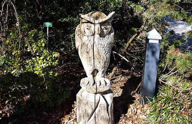 Holzschnitzerei im Botanischen Garten Augsburg