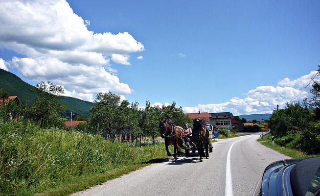 Pferdegespann in Bosnien-Herzegovina