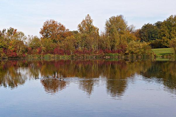 Der Rothsee
