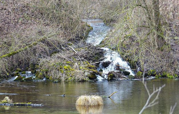 Kleiner Wasserfall beim Lech