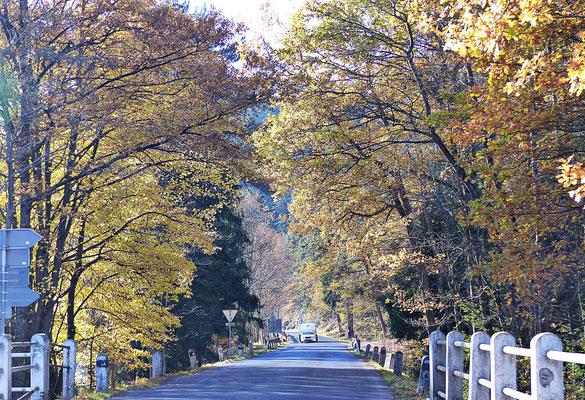 Beim Sumava im Herbst