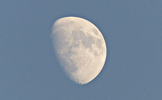Herrlicher Mond