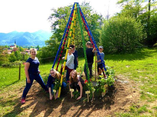 Jugendseminare - Obst- und Gartenbauvereine im Landkreis Rosenheim