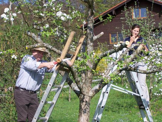 Veredlungskurs, Kreisverband für Gartenbau und Landespflege Rosenheim e.V.