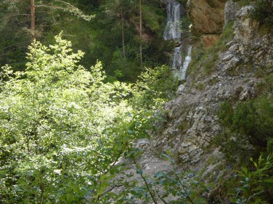"""Jugendleiterseminar """"Mit Kindern im Wald"""" Kreisverband für Gartenbau und Landespflege Rosenheim e.V."""