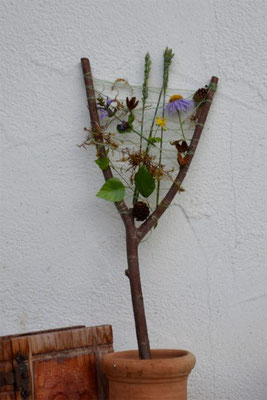 Jugendarbeit, Kreisverband für Gartenbau und Landespflege Rosenheim