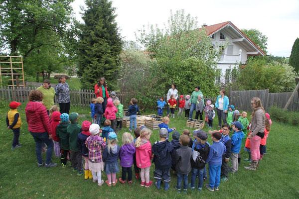 Kinder bauen Kartoffelpyramiede - Gartenbauvereine im Landkreis Rosenheim