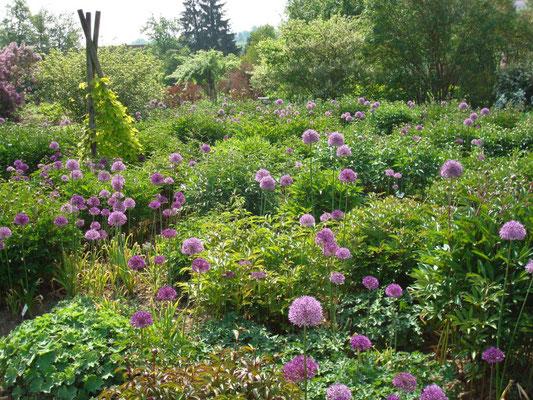 Lehrfahrten Kreisverband für Gartenbau und Landespflege Rosenheim e.V.