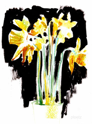 Evening Daffodils, 13 x 18 cm, ink and wc on paper, 2015