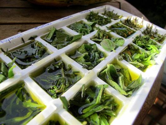 Kräuterwürfel mit Olivenöl