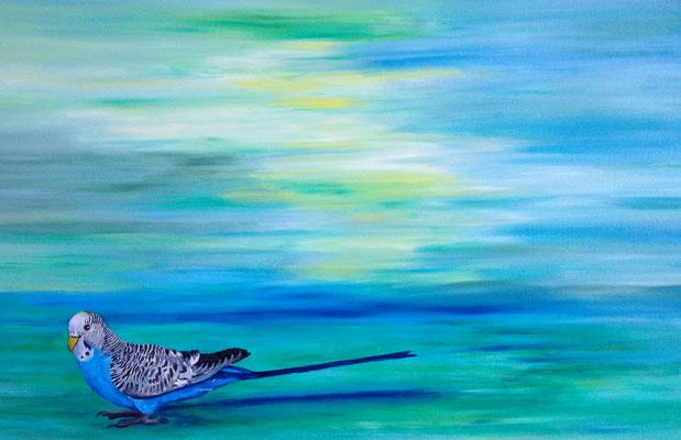 Melopsittacus undulatus ~budgie ~ Wellensittich~ perruche ~ periquito ~ волнистый попугайчик ~ 虎皮鸚鵡 ~ セキセイ -----  40 x 60 cm  oil/canvas