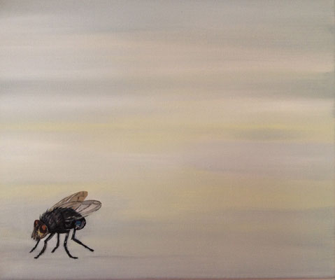 Musca ~ fly ~ Fliege ~ mosca ~ mouche ~ 飛 ~ フライ ~ الطاير ~ मक्खी ~  40 x 40 cm  oil/canvas