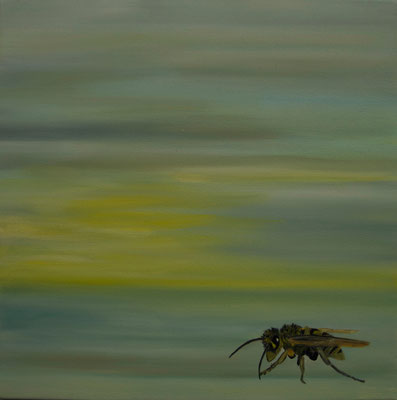 ~ Wasp ~ Wespe ----- 40 x 40 cm oil/canvas