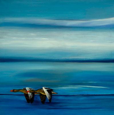 Anserinae ~ geese ~ Gänse ~ oche ~ oies ~ gansos ~гуси ~ 鵝 ~ 거 ~ ギース  ----- 80 x 80 cm oil/canvas