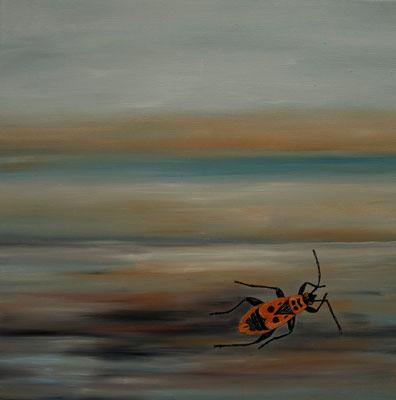 firebug ~ Feuerwanze ~ pyromane ~ поджигатель ~ 螢火蟲 ~ 放火犯 ~ الحرائق  ~