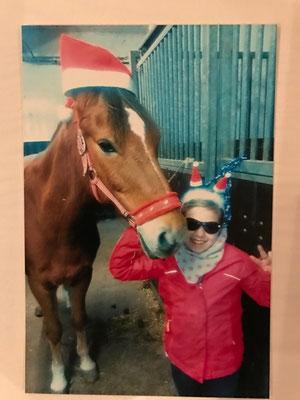 Tolle Weihnachtsbilder.Fotowettbewerb Herzlich Willkommen Bei Reitstall Berger