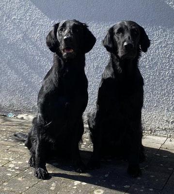 Quinn (links) mit Jean (7,5 Jahre alt)