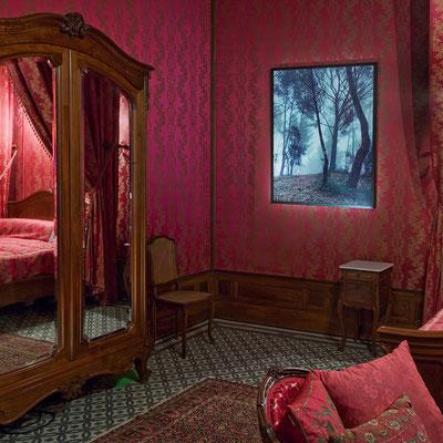 """expo """" D'après nature """" Domaine du chateau d'Avignon © jcLett"""