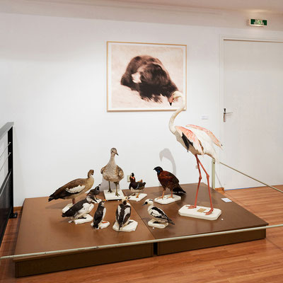 MUSÉE DE GAP © jcLett