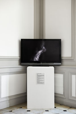 Dominique Castell © Jeanchristophe Lett